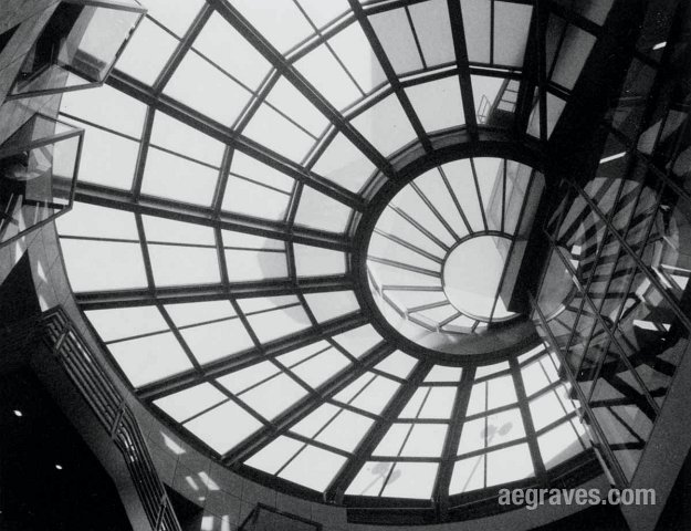 Image of the San Francisco Main Library ceiling, photograph by A.E. Graves