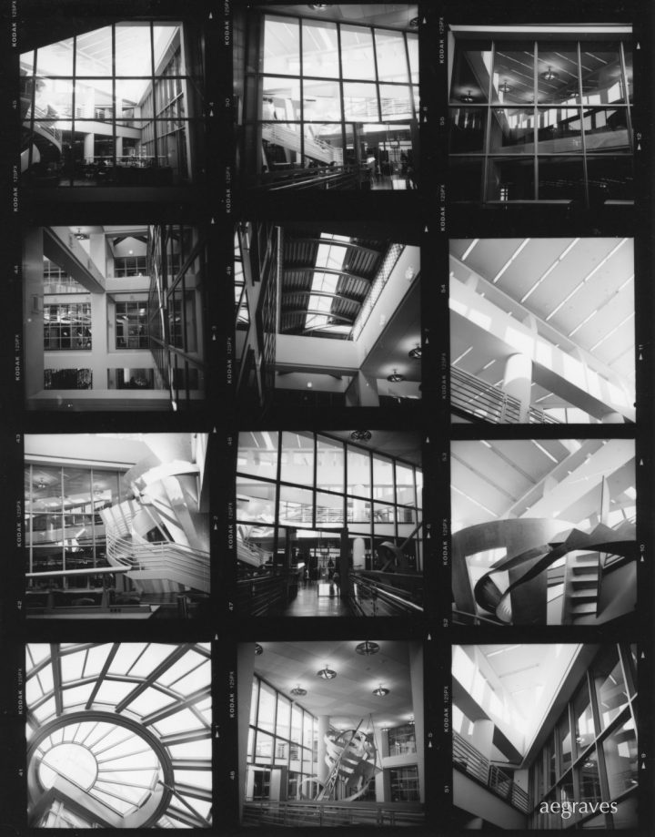 Medium format film contact sheet