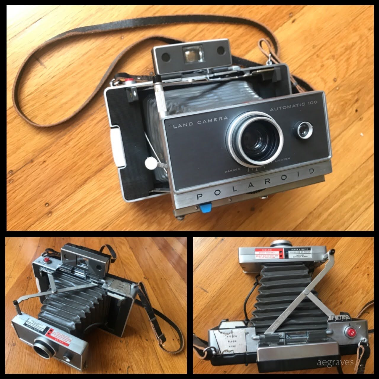 My beloved Polaroid Land Camerca