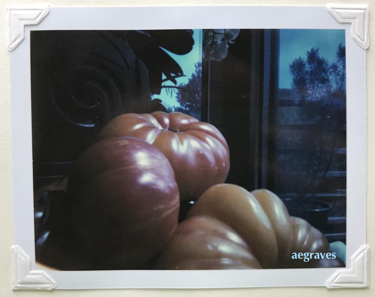 pinhole photo of ruffled tomatoes